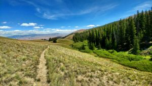 A trail leads down a valley in the mountains near jackson wyoming dude ranch CM Ranch