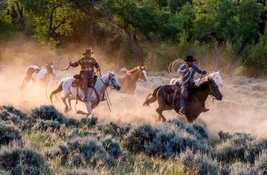 Ranch hands on horseback herd riderless horses near CM Ranch in Dubois, WY | Wyoming dude ranch