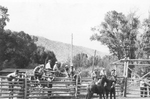Ranch hands sit on a lodgepole fence near horses at historic CM Ranch in Dubois, WY | Wyoming guest ranches