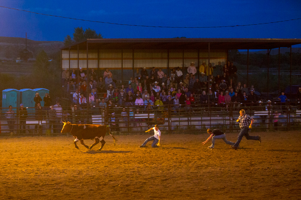 Three men try to rope a steer at a rodeo near CM Ranch in Dubois, WY | cabins in Dubois Wyoming